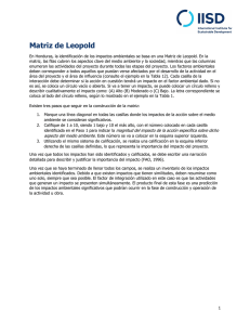 Matriz de Leopold - International Institute for Sustainable Development