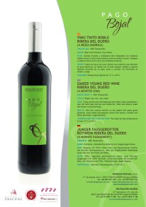 VINO TINTO ROBLE RIBERA DEL DUERO OAKED YOUNG RED