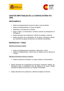 gastos imputables de la convocatoria pci 2006