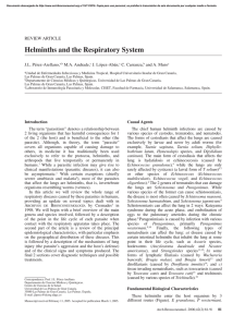Helminths and the Respiratory System