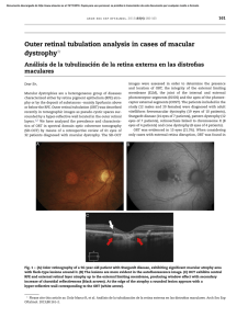 Outer retinal tubulation analysis in cases of macular