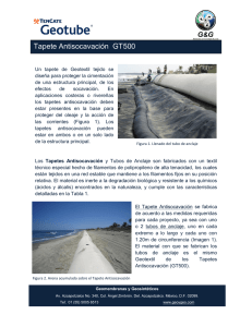 Nota Técnica Geotube® Tapete Anti