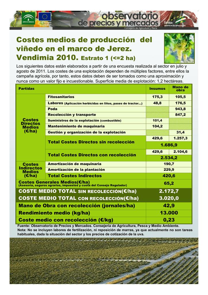 Costes medios de producción del viñedo en el marco de Jerez.
