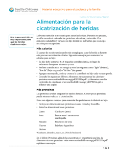 PE2115S Nutrition for Wound Healing - Spanish