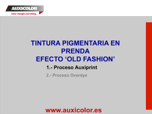 presentación Old Fashion Garment Dyeing Auxiprint