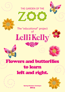 Flowers and butterflies to learn left and right.