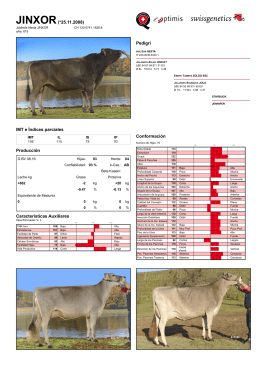Swissgenetics International: Jolahofs Nesta JINXOR