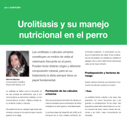 medicamentos para disminuir el acido urico tratamiento para calculo renal de acido urico que frutas y verduras contienen acido urico
