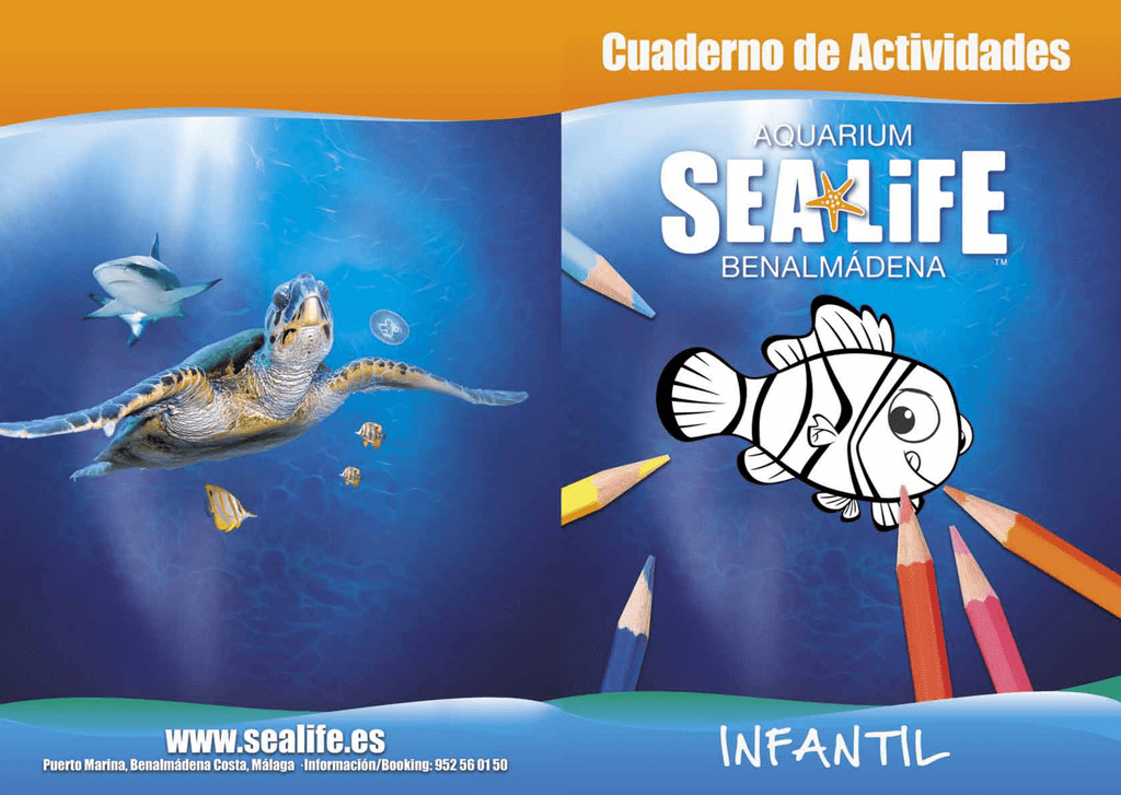AQUÍ - Sea Life