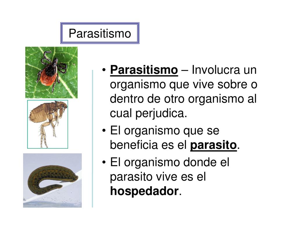 que consiste parasitismo