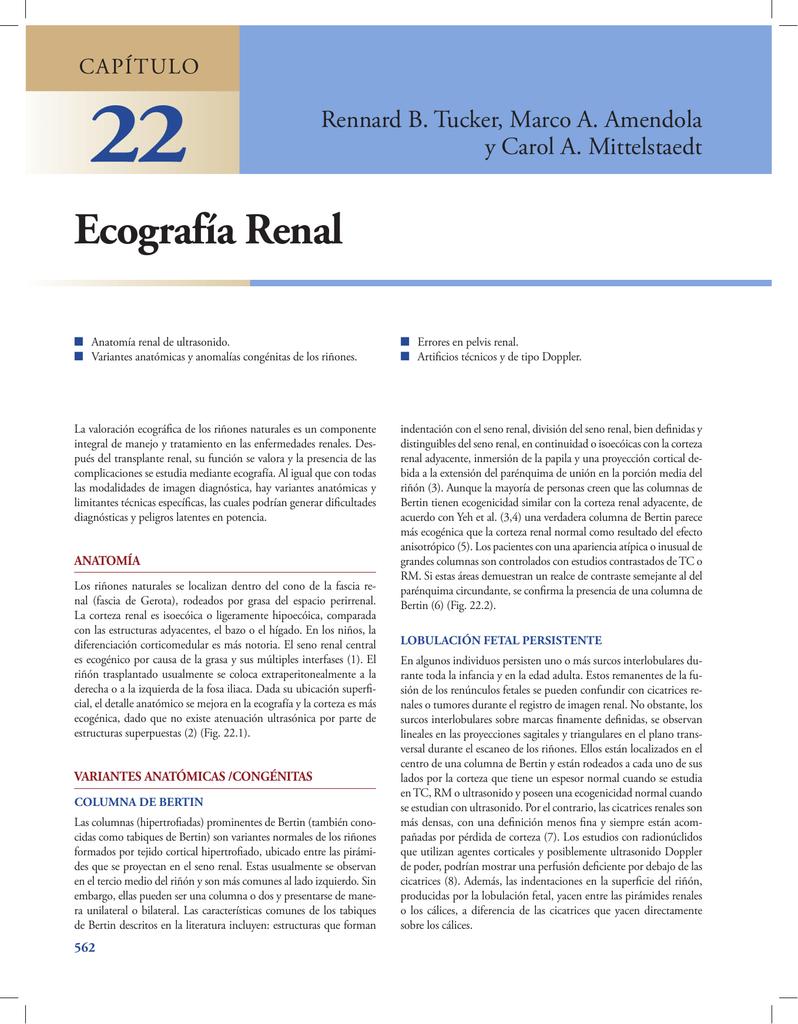 Ecografía Renal