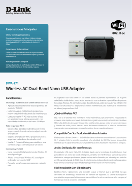 Wireless AC Dual-Band Nano USB Adapter - D-Link