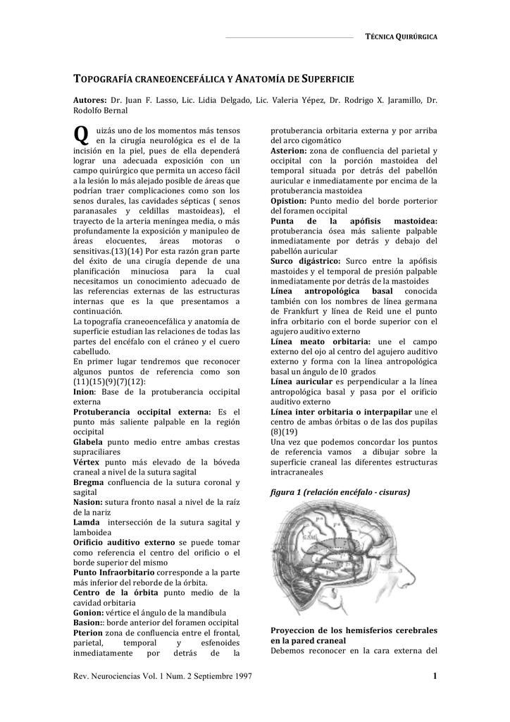 Topografía craneoencefálica y anatomía de superficie