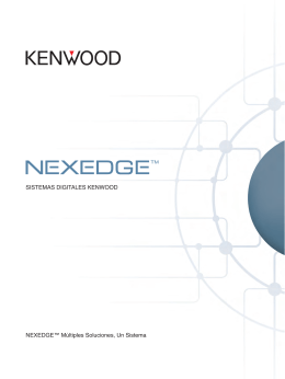 NEXEDGE 2013_web