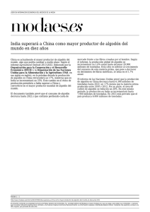 India superará a China como mayor productor de algodón del