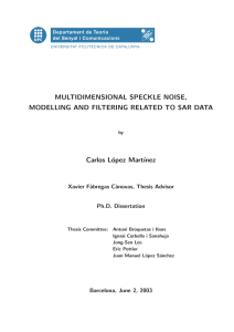 MULTIDIMENSIONAL SPECKLE NOISE, MODELLING AND