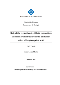 Role of the regulation of cell lipid composition and membrane