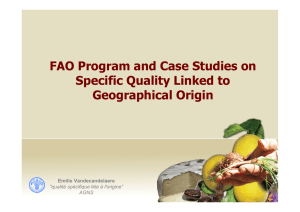 FAO Program and Case Studies on Specific Quality Linked to