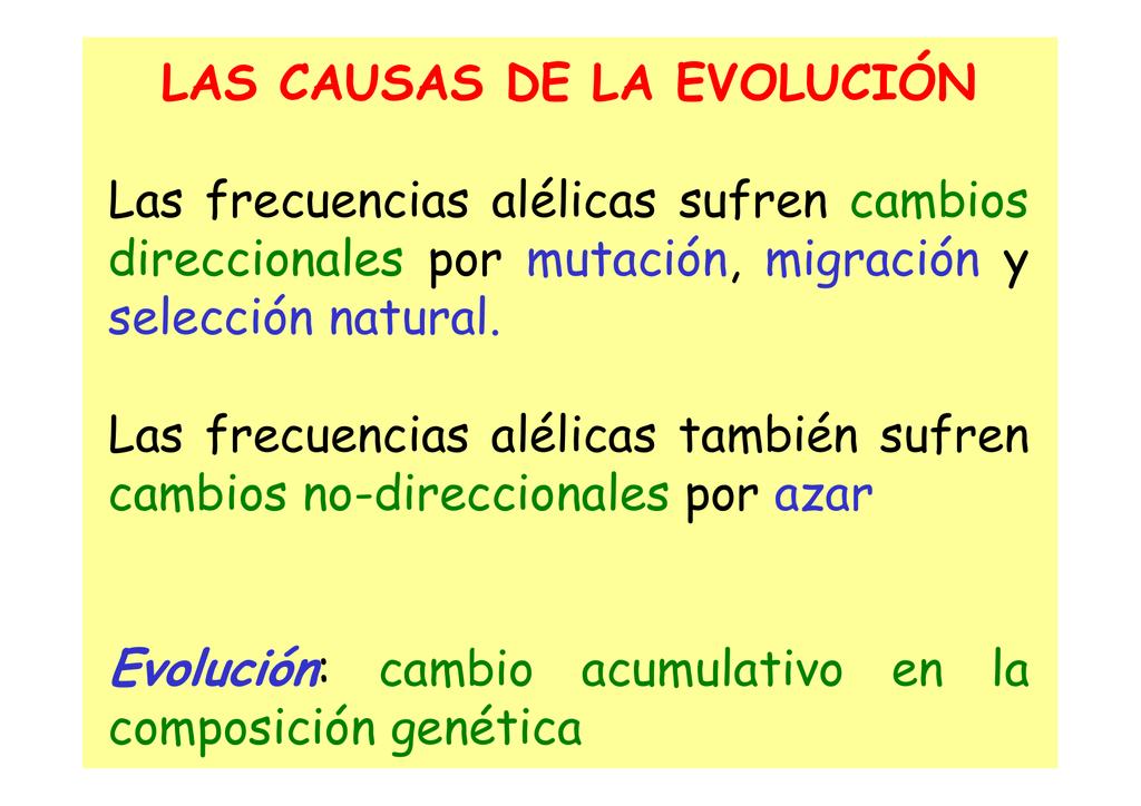LAS CAUSAS DE LA EVOLUCIÓN Las frecuencias alélicas sufren