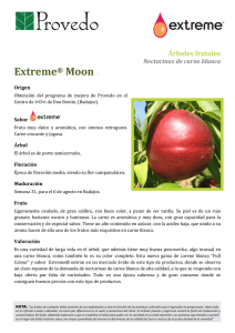 Extreme® Moon T