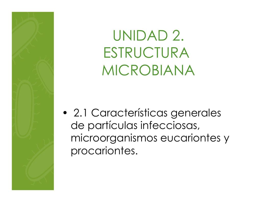 Eucariontes