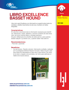 libro excellence basset hound