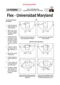Flex - Universidad Maryland