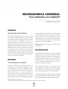 neuroquimica cerebral