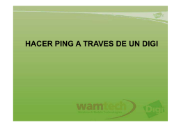 Hacer Ping Digi Connect Wan 3G