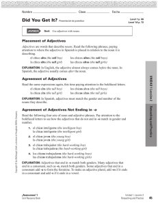 45 Placement of Adjectives Agreement of Adjectives Agreement of