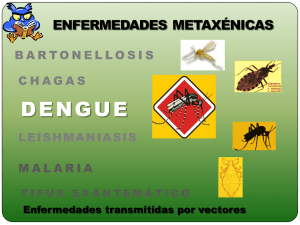 Caso probable de dengue grave