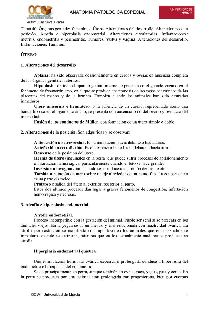 to get the file - OCW - Universidad de Murcia