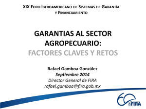 garantias al sector agropecuario: factores claves y