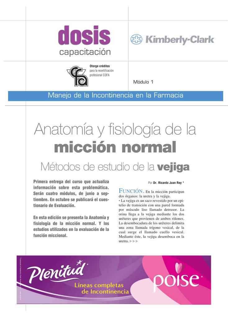 Anatomía y fisiología de la micción normal