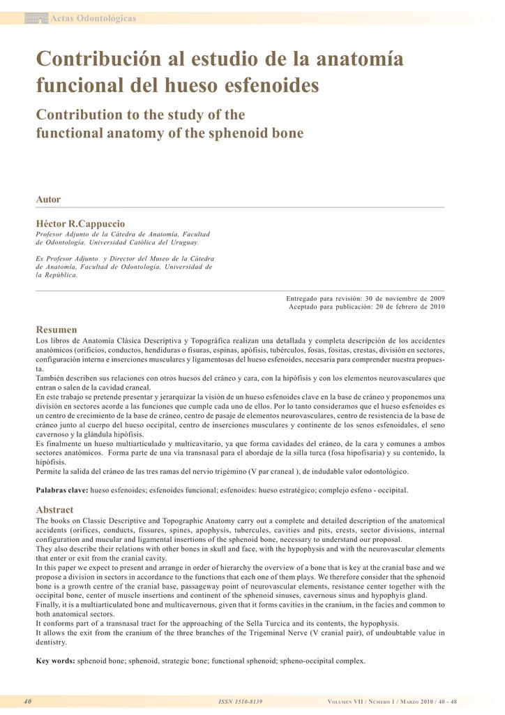Contribución al estudio de la anatomía funcional del hueso esfenoides