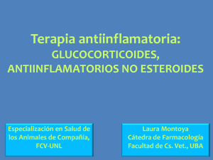 Terapia antiinflamatoria - Facultad de Ciencias Veterinarias