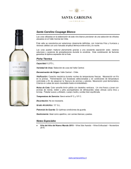 Santa Carolina Coupage Blanco 2013,375l.docx