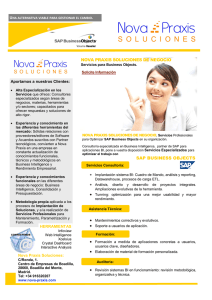 Servicios para SAP Business Objects
