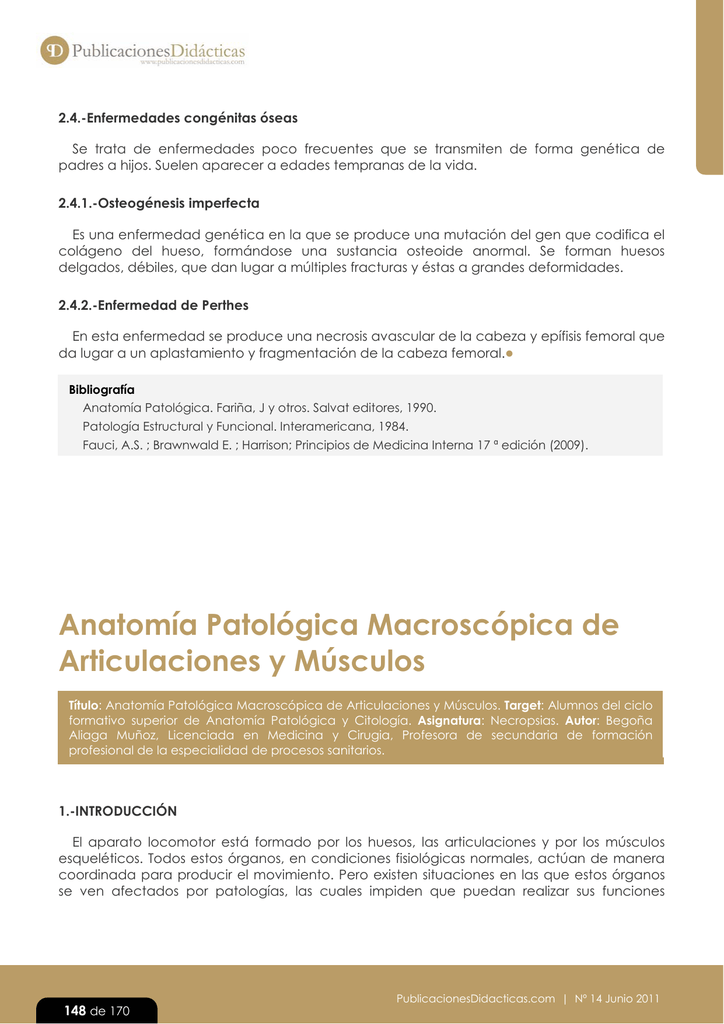 Lujoso Diagrama De La Anatomía Morsa Colección de Imágenes ...