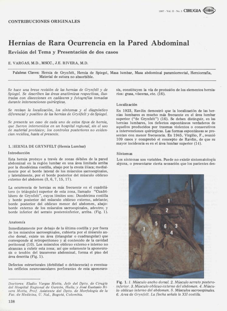 Hernias de Rara Ocurrencia en la Pared Abdominal