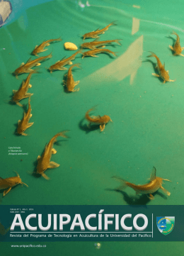 revista ACUIPACIFICO - Universidad del Pacífico