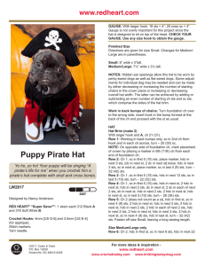 Puppy Pirate Hat
