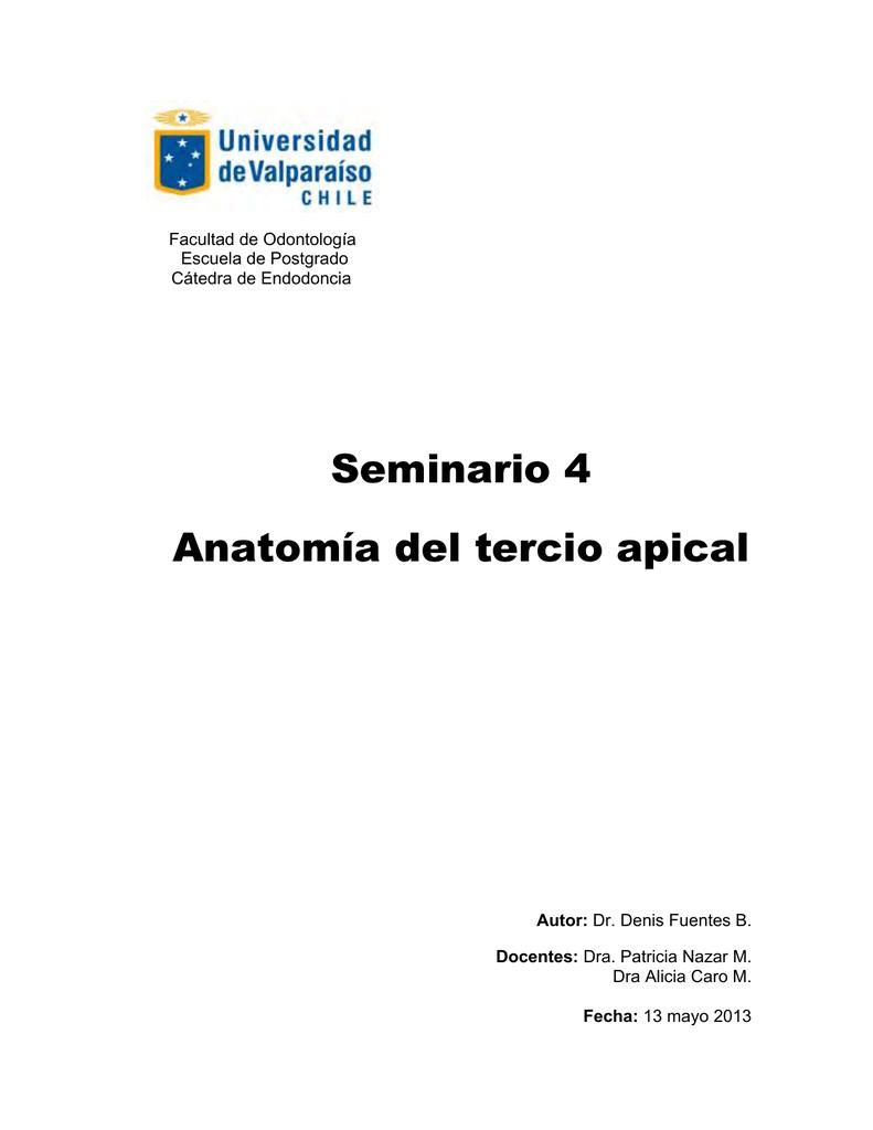 Seminario Anatomia del Tercio Apical dos
