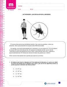 IPOTCH Calcetines De Encaje Inferiores A Escala 1//6 para Figura De Acci/ón De 12 Pulgadas Accs De Cuerpo Femenino Negro