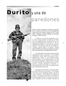 paredones - Revista Rebeldía
