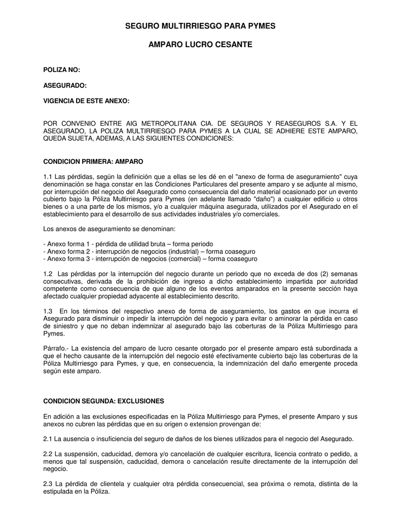 AIGM - CG - SM - PYMEs - Amparo Lucro Cesante