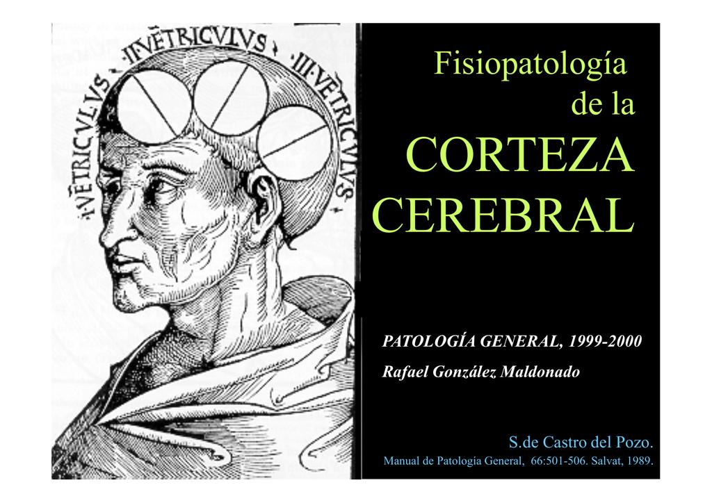 Presentación de PowerPoint - Rafael González Maldonado