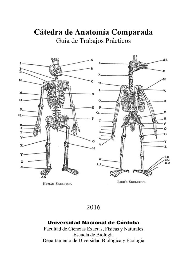 Cátedra de Anatomía Comparada