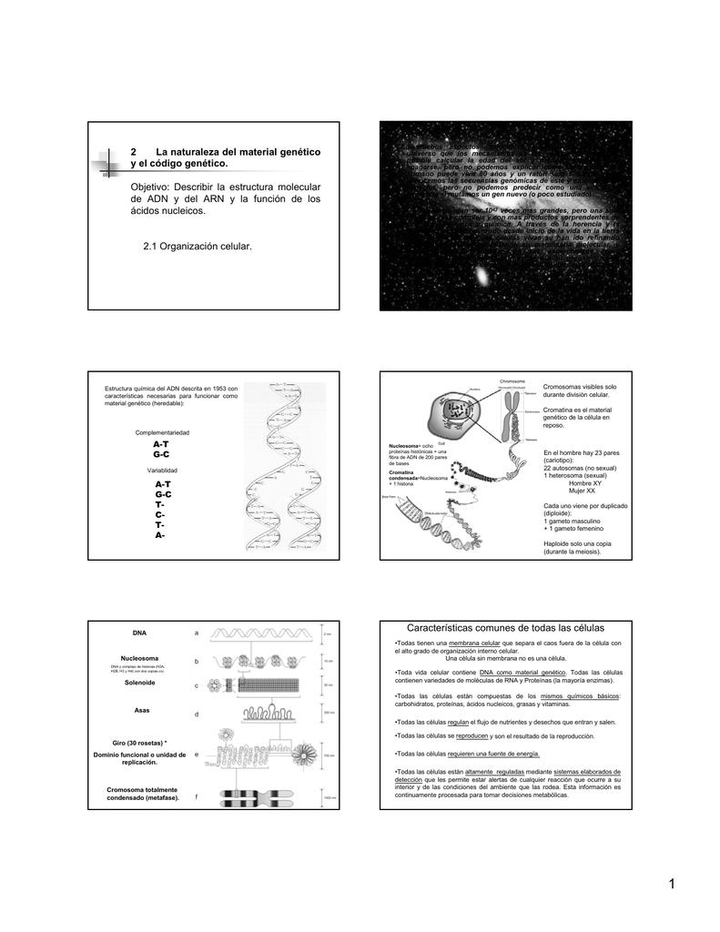 2 La Naturaleza Del Material Genético Y El Código Genético