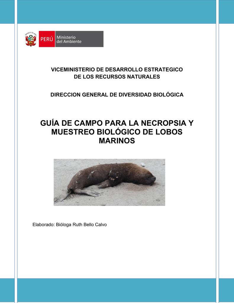 Guía de campo Lobos marinos
